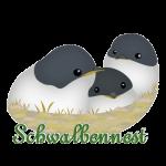 schwalben-nest