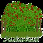 kiekenbusch