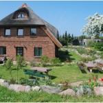 lindenhof-fruehling10