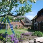 lindenhof-fruehling5