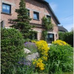 lindenhof-fruehling8